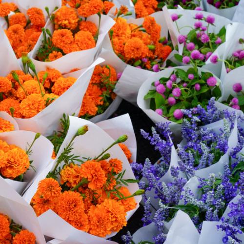 Ramos de lilas y claveles naranja